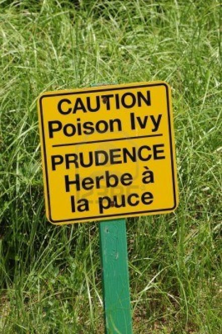 6688433-poison-ivy-sign-in-english-and-french